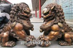 12 Royal Chinese Bronze Copper Evil Fengshui Fu Foo Dog Guardian Door Lion Pair