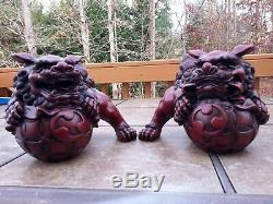 Chinese Feng Shui Lucky Lion Foo Dogs Statue