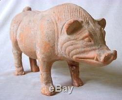 MAGNIFICENT Ancient Chinese HAN DYNASTY TERRACOTTA BOAR, 23 AD 220 AD