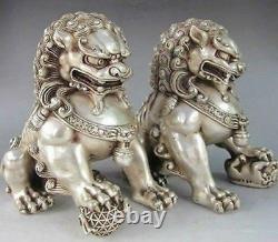 6 Une Paire Chinoise Argent Bronze Fu Foo Dog Guardian Lion Statue