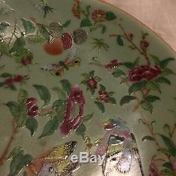 Antique Rose Famille Chinoise Cantonais Assiette En Porcelaine Peinte À La Main Qing