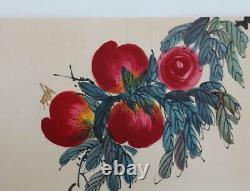 Beaux Peint À La Main Peinture Chinoise Rouleau Livre Qi Baishi Mark 600cm (k25)