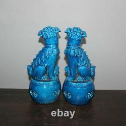 Vieille Paire Chinoise Marquée Statues Bleues De Chiens De Foo De Porcelaine De Glaçure